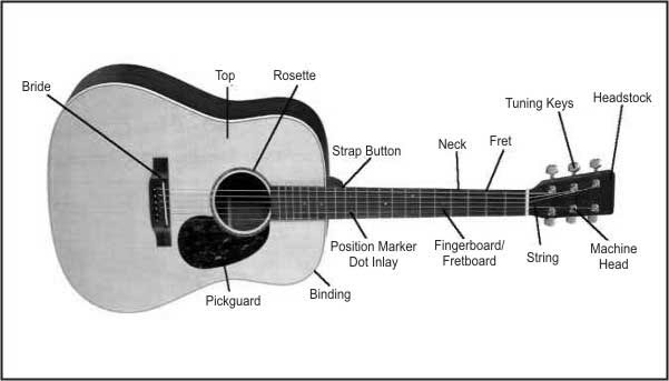 Guitar Parts Diagram Pictures to Pin on Pinterest - PinsDaddy