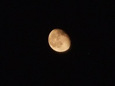 Waning Gibbous Moon Picture