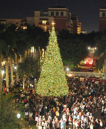 Welcome To Miami & The Beaches: Annual Holiday Tree