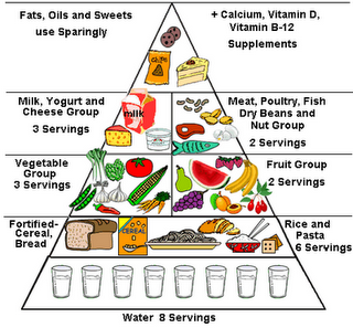 Blank new food pyramid