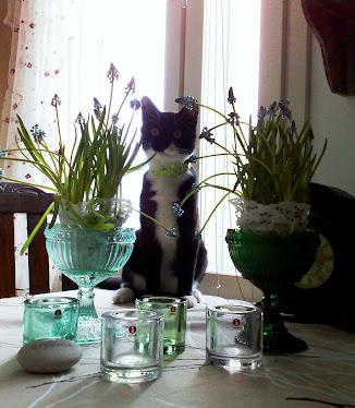 Suomalaista lasidesignia