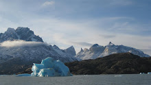 Iceberg off the Grey Glacier