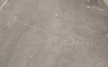 Hummingbird from the Nazca lines
