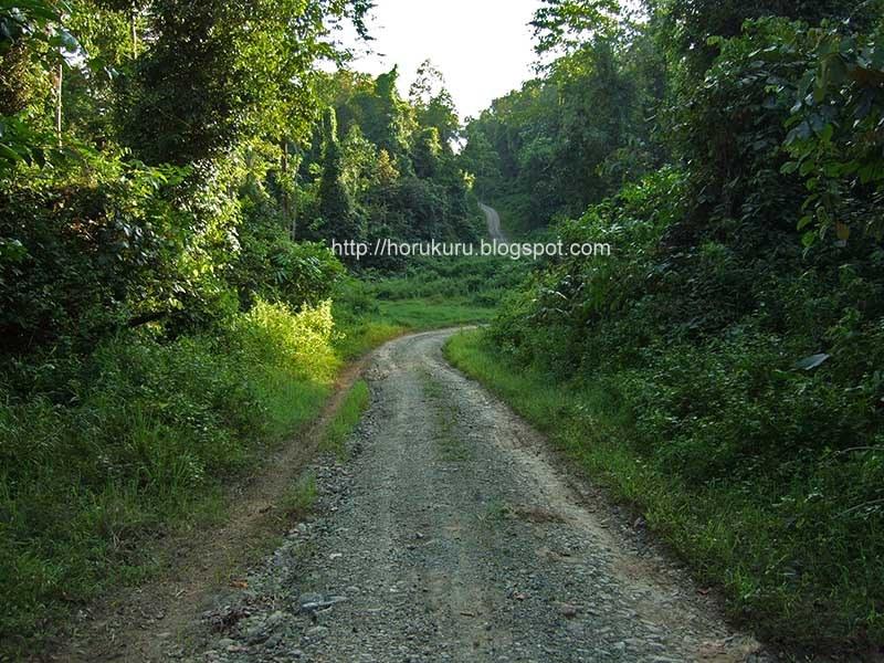 [trail.jpg]