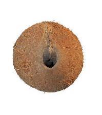 One Eye Coconut