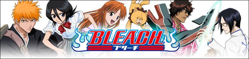 bleach_banner12322.jpg