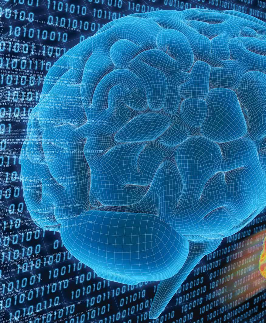 Waktu Terbaik Menyimpan Memori Otak