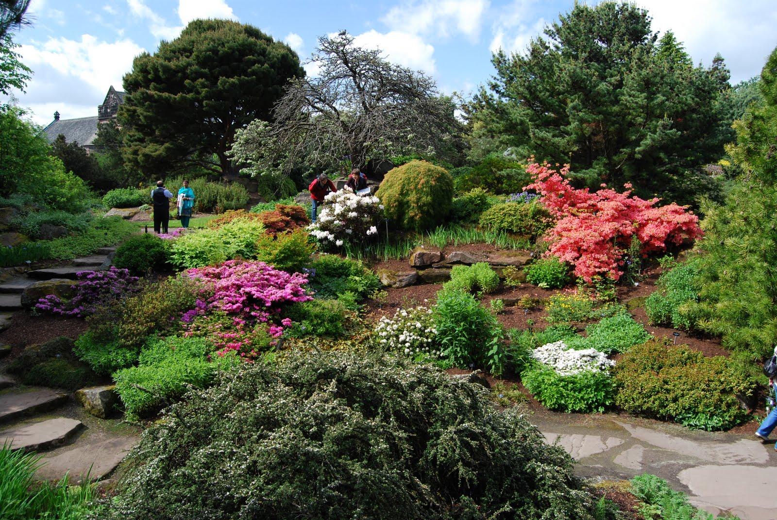 Jason Lattier 39 S Garden Journal Royal Botanic Gardens Edinburgh