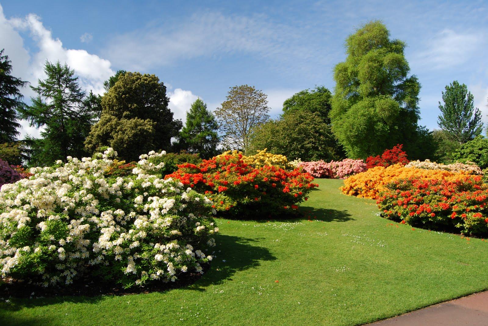 The Royal Botanic Gardens Of Edinburgh Edinburgh Scotland Atlas Obscura