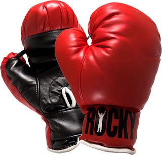 http://2.bp.blogspot.com/_lGq9Ut1IZhI/S36SnPw9BeI/AAAAAAAAAlc/mu8NelOG2G8/s320/Boxing.jpg