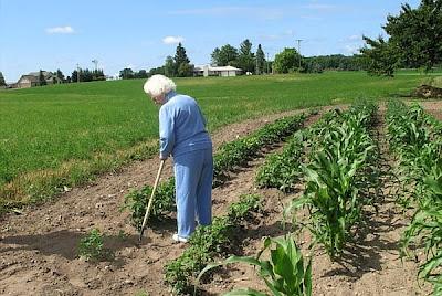 Remedios caseros de la abuela