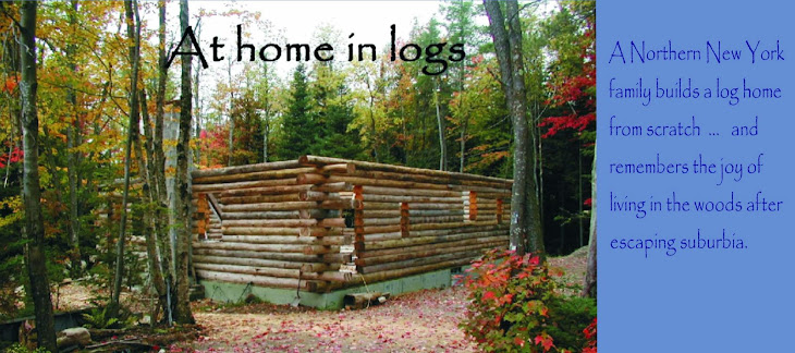 At Home In Logs