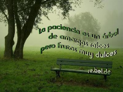 http://2.bp.blogspot.com/_lIfR35EfAps/RfWiVg_IxWI/AAAAAAAAADk/gkSzj5rhXXE/s400/paciencia.JPG