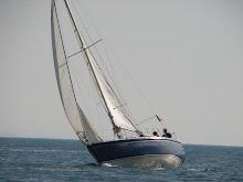 Percurso à Vela - 14 de Fevereiro
