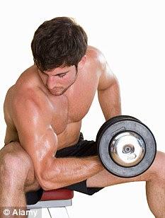 Membangun Otot Tubuh