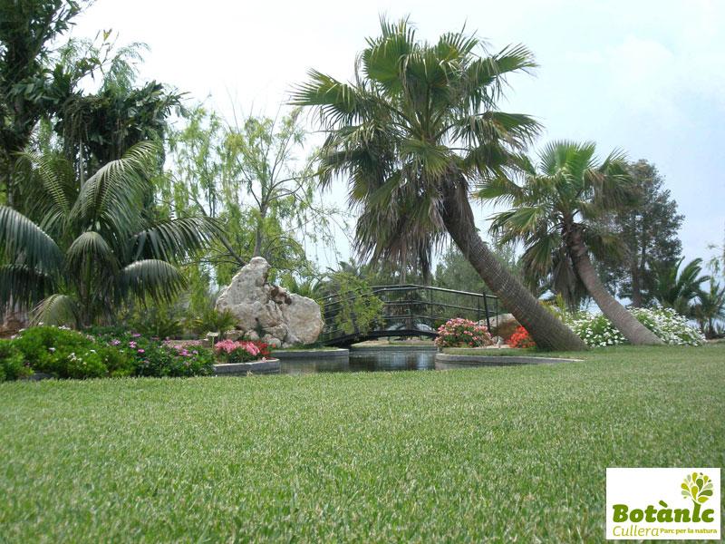Tot cullera botanico for Informacion sobre el jardin botanico