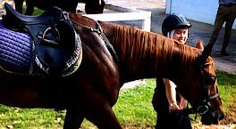 Kompilasi N3 Menunggang Kuda