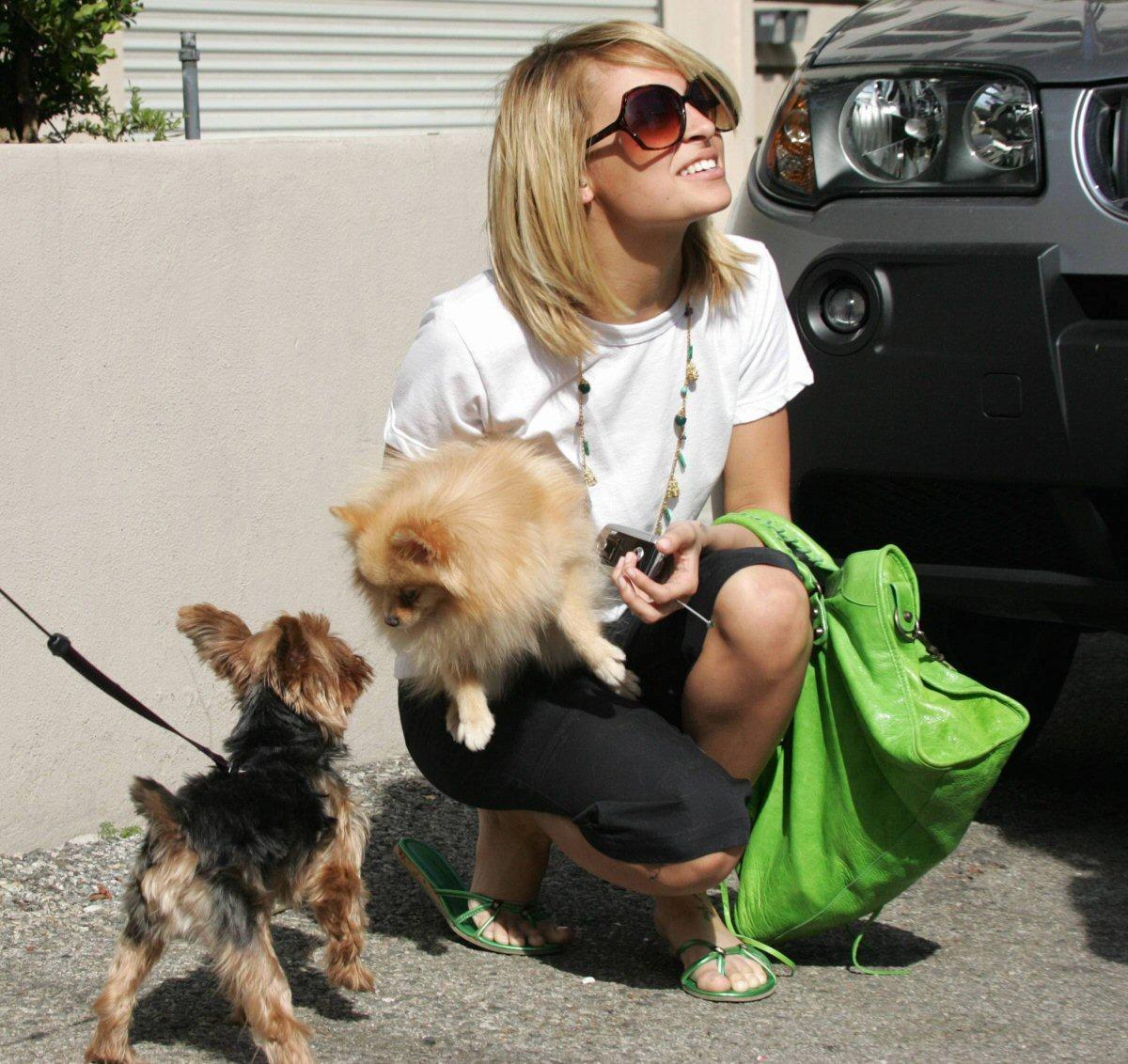 http://2.bp.blogspot.com/_lKe2XK1kSnY/S8dkzddvdHI/AAAAAAAABsY/mQBmuMBLueg/s1600/nicole-richie-dogs.jpg