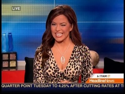 Robin Meade Measurements http://robinmeadepictures.blogspot.com/