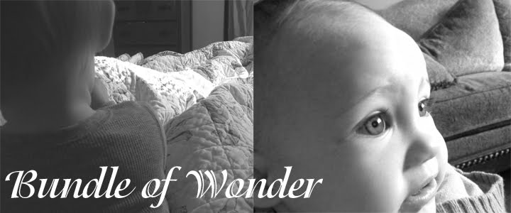 Bundle of Wonder