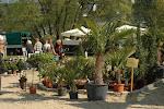 Garten & Pflanzenmarkt Biedenkopf