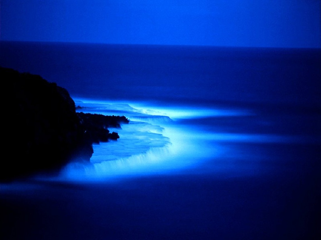 http://2.bp.blogspot.com/_lM65W2qsFHQ/SwRswG1v-EI/AAAAAAAACRU/Ik3sIhpybYA/s1600/blue-sea-at-night-w32942.jpg