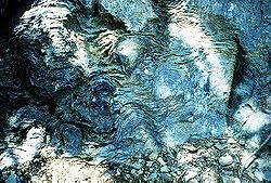 [Image: 250px-Stromatolites.jpg]