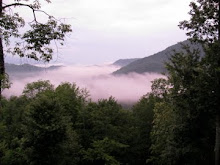 The Smokies