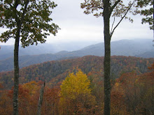 Smoky Mountain Fall