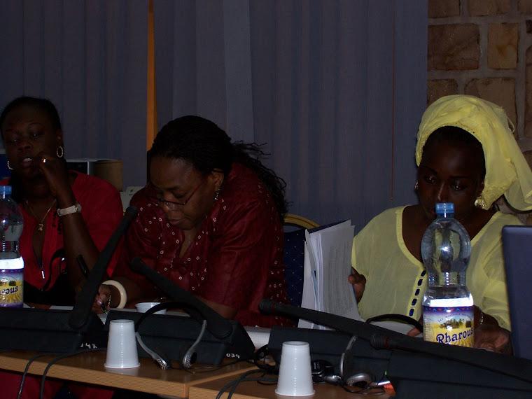 2007 Niamey