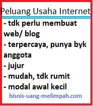 Peluang Usaha Internet