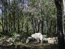 Dolmen de Clamarquier 2007