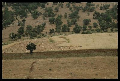 2009_Iran_627.jpg