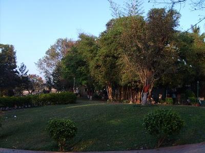 Welcome To Bhagyesh 39 S Blogs Vartak Udyan Garden Pune