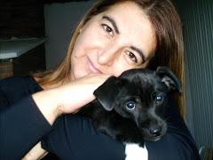 Meu cãozinho Dunga