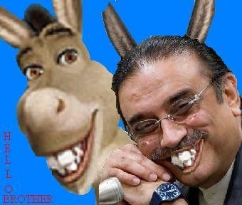 Similarity of Zardari and Donkey