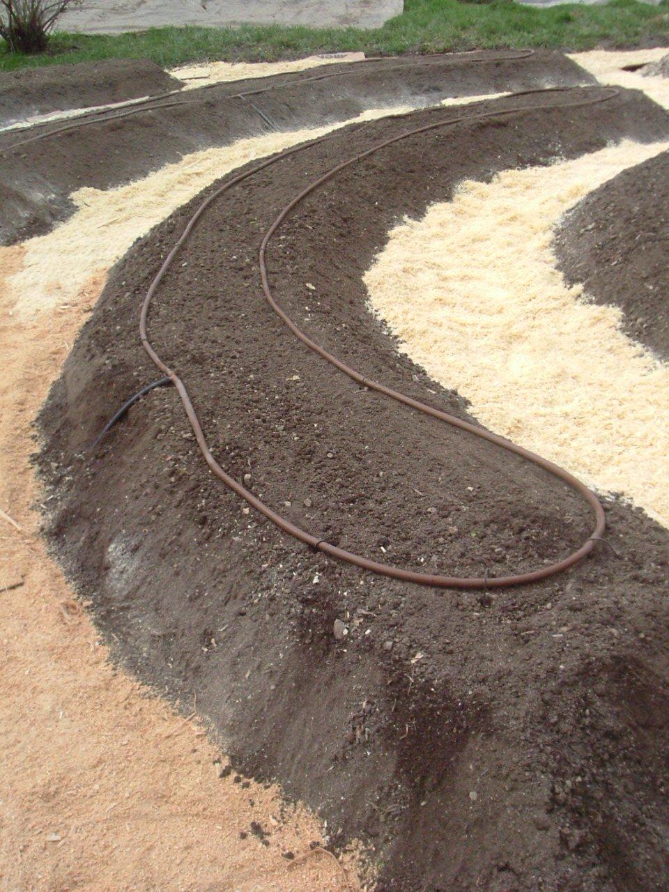 Bancale con irrigazione goccia a goccia