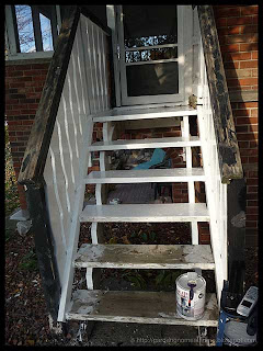 paint the stairs