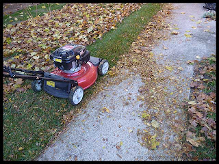 mulching leaves with lawn mower