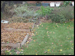 cleaned garden beds