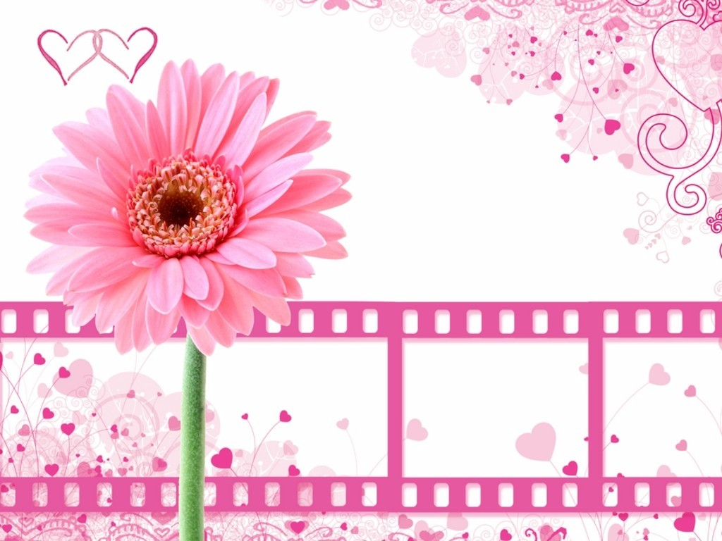 Pink Wallpapers Cute Girly Desktops Pink Twitter Backgrounds