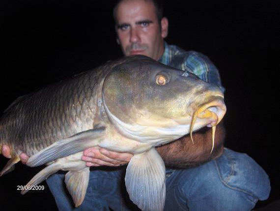 12,2 kg 29 Junho 2009