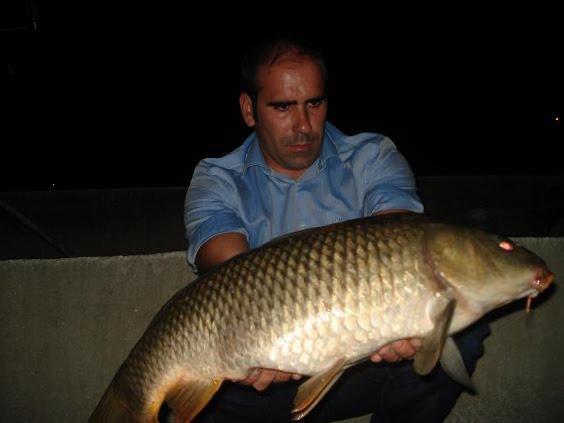 Carpa 6,8 kg Aguieira 2 Outubro 2009