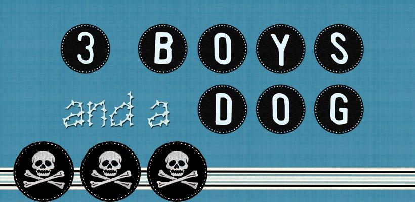 3 Boys and a Dog