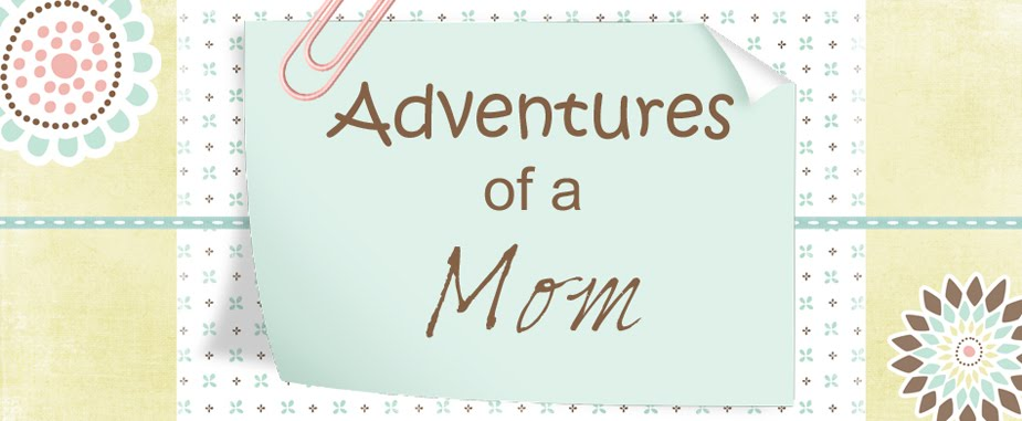 Adventures of a Mom