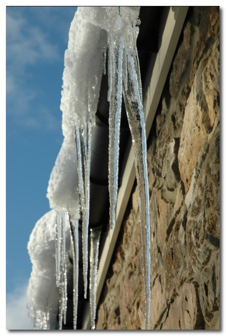 icicles in Donkleywood