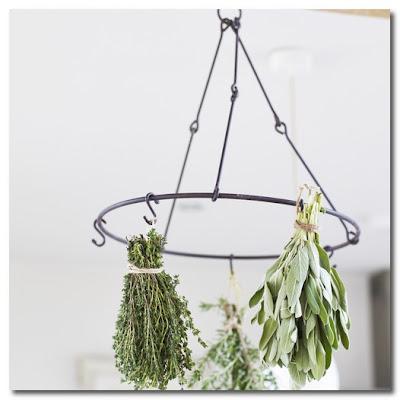 herb hanger cox and cox