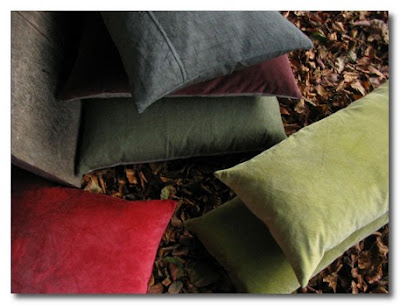 cushions by Kirsten Hecktermann