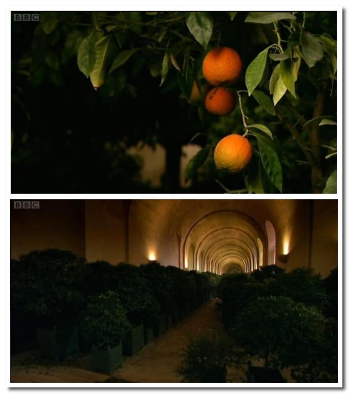 versailles stories bbc