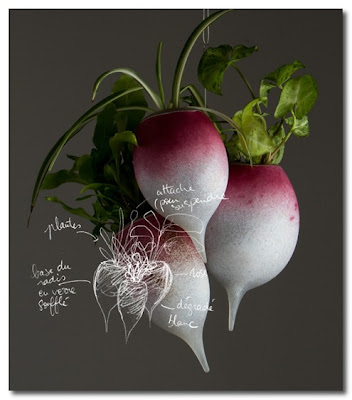 glass blown radishes